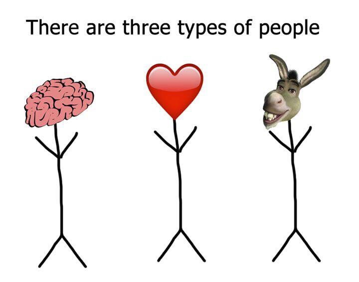 brain, donkey, funny and haha
