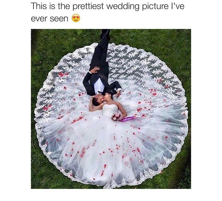 black, bnw, circle, dress, expensive, floral, flower, goals, gown, husband, lux, luxury, party, perfect, photo, photograph, photoshoot, pink, pretty, prewed, prewedding, red, relationship, rose, suit, tie, wedding, white, wife, prewedd