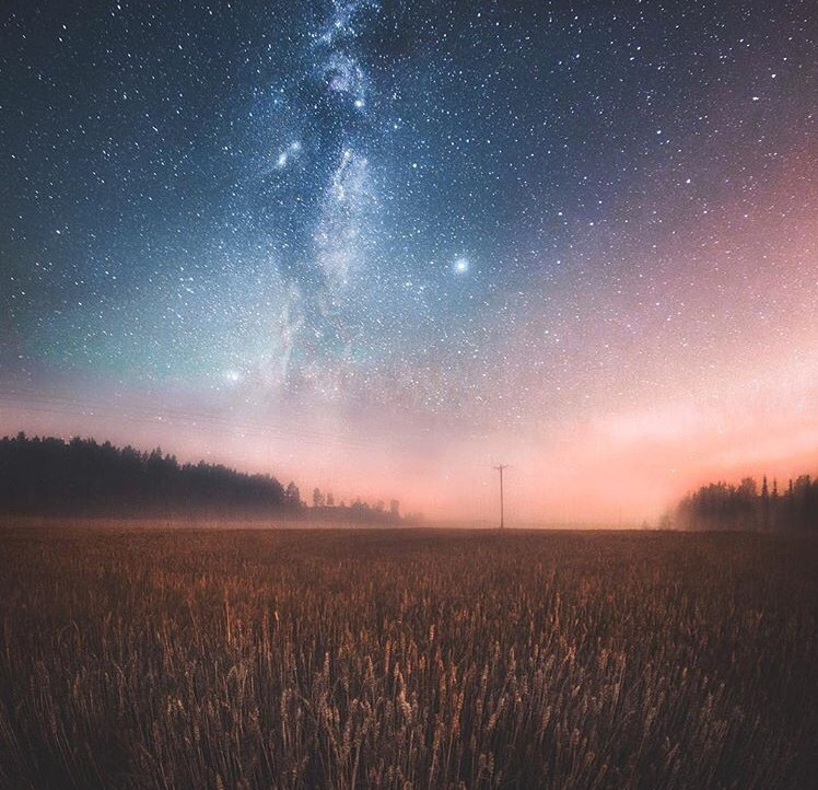 travel, background, aesthetic, outdoors, meadow