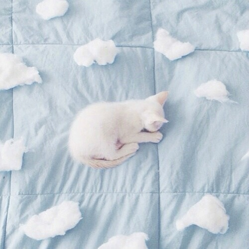 Aesthetic Baby Baby Blue Blue Cute Image 4383795 By