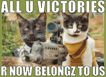 funny cats, war cats, advanced cats and army cats
