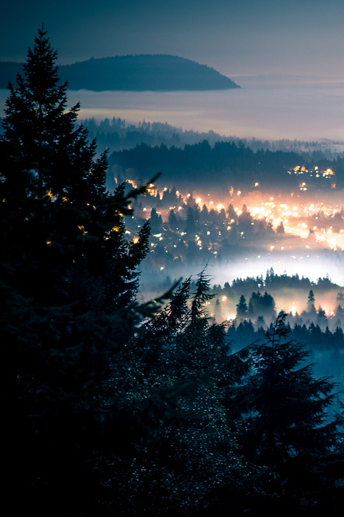 aesthetic, beautiful places, fog, photography, winter