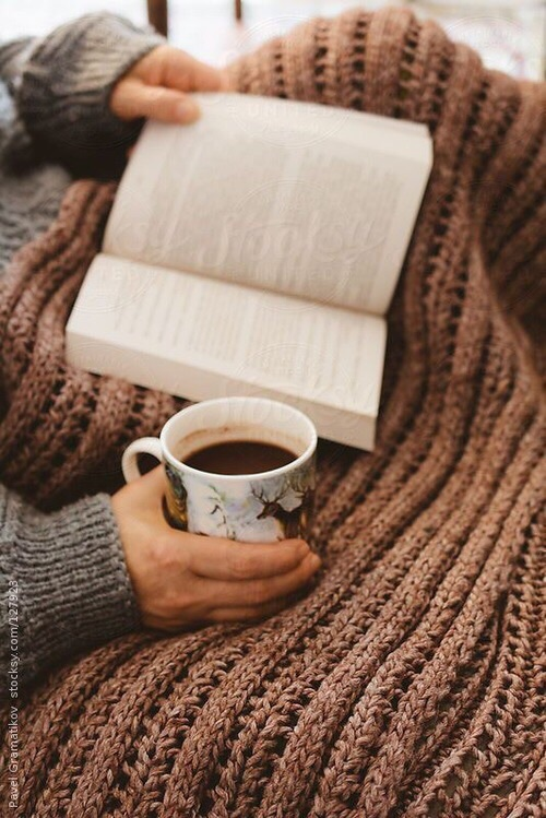 autumn, blanket, brown, cinnamon, cozy