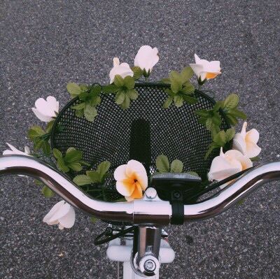 bicycle, enjoy, flowers, grunge, happy