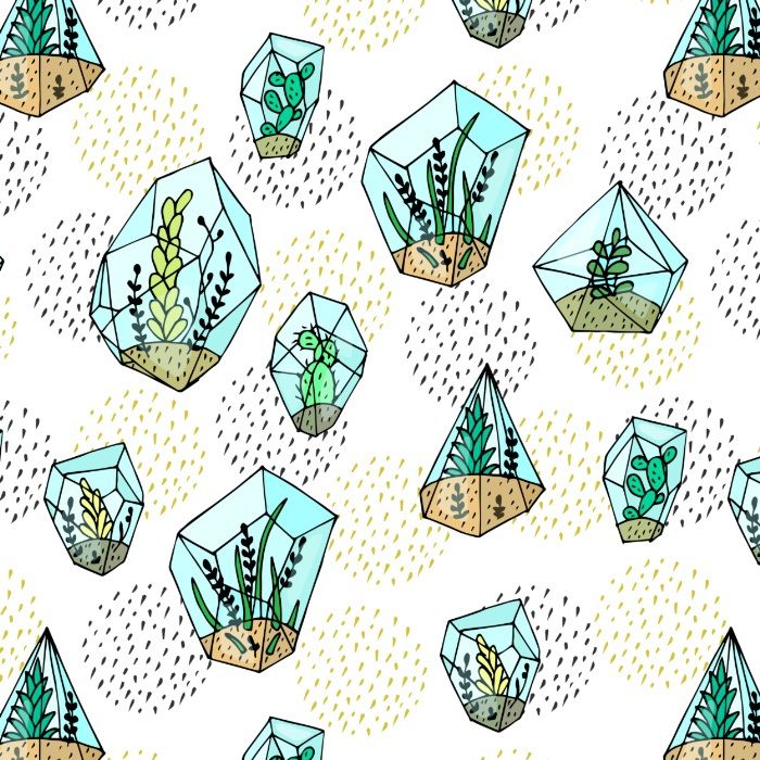 background, cactus, glass, pattern, plant