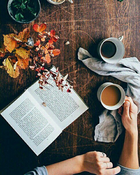 amazin, autumn, book, brown, coffee
