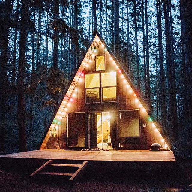 adventure, cabin, forest, night lights, outdoors