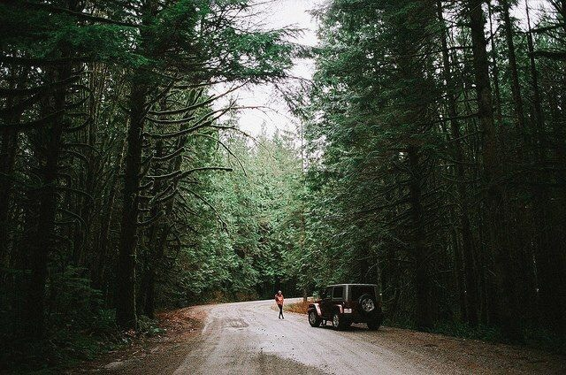 aesthetic, car, forrest, green, jeep