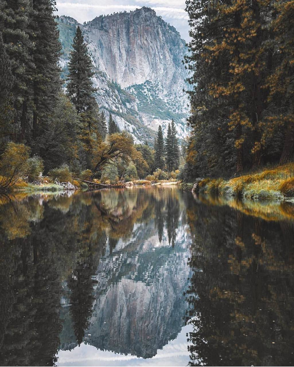 adventure, autumn, cozy, fall, forest
