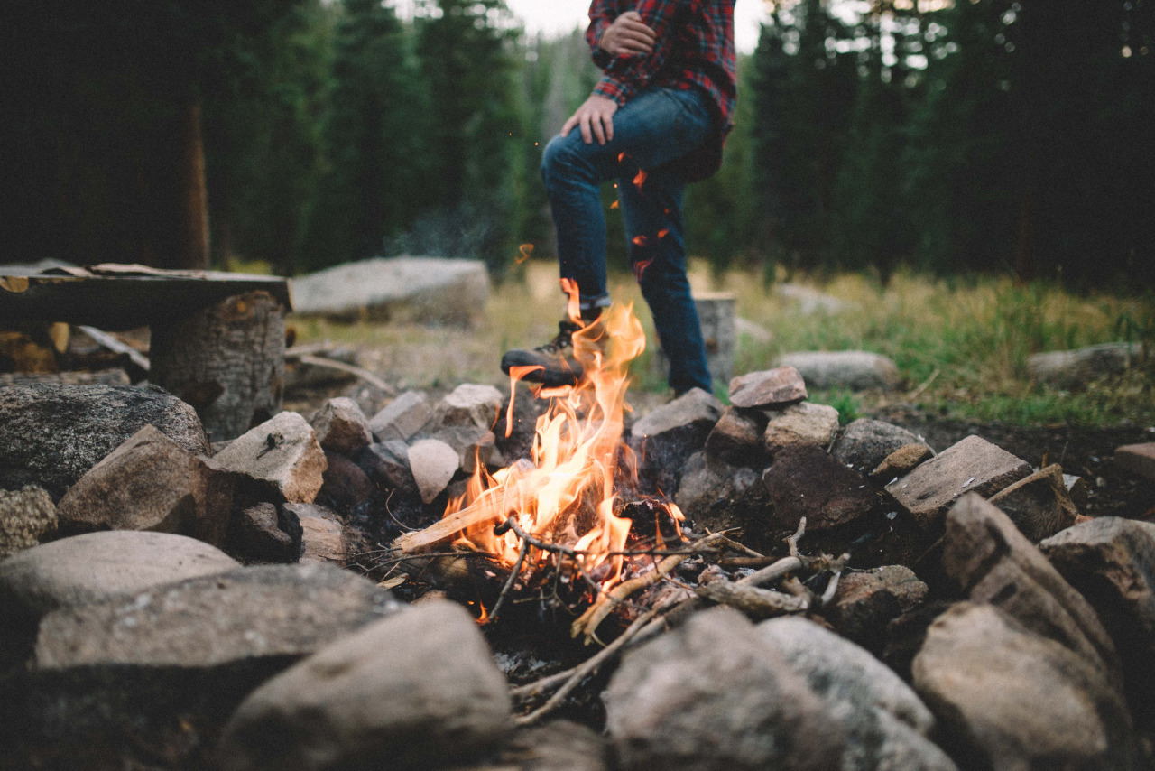 adventure, camp, explore, fire, forest