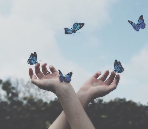 book, butterfly, hand, instagram, sky