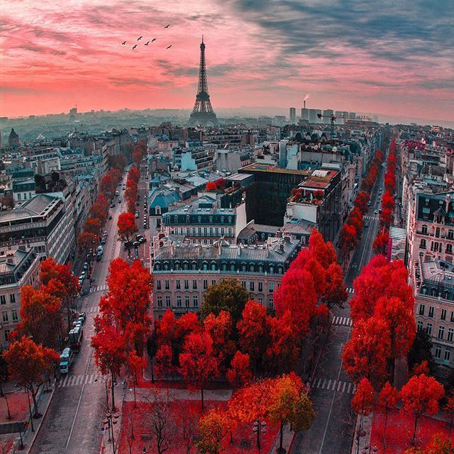 autumn, eiffel tower, fall, france, paris