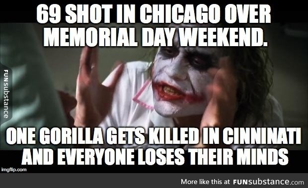 chicago, funny, humor, memorial, over
