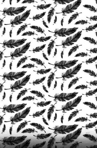 black, feathers, patterns, white