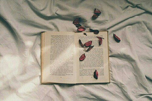 aesthetic, book, books, petals, photography