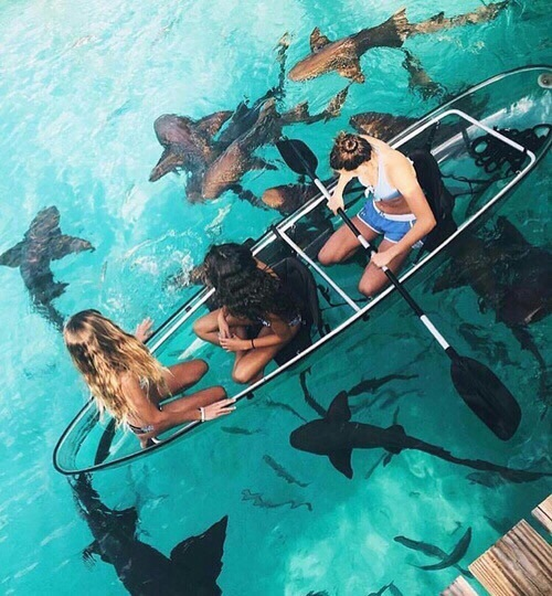 friendship, goals, sea, water, where is this