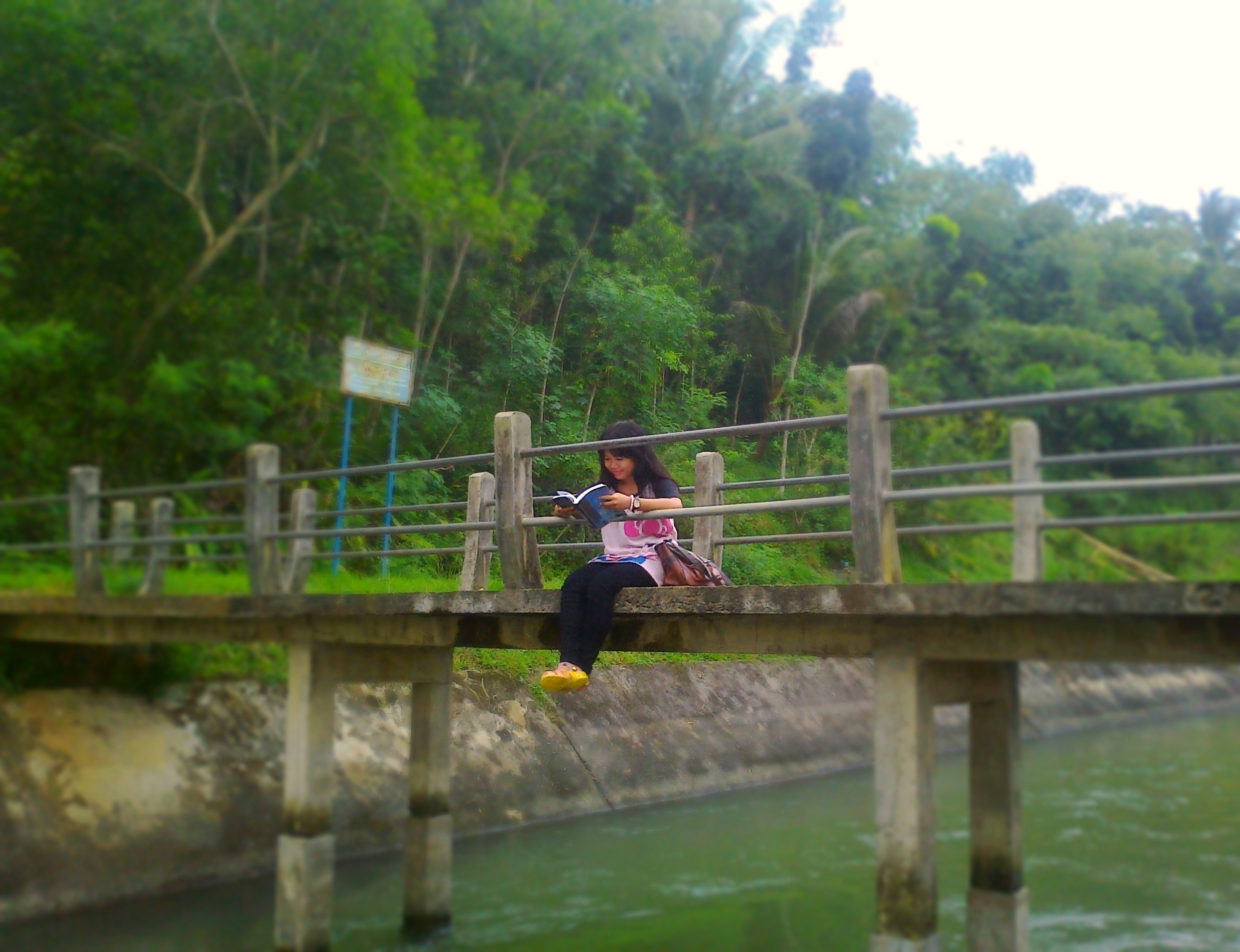 alone, book, bridge, favim, girl