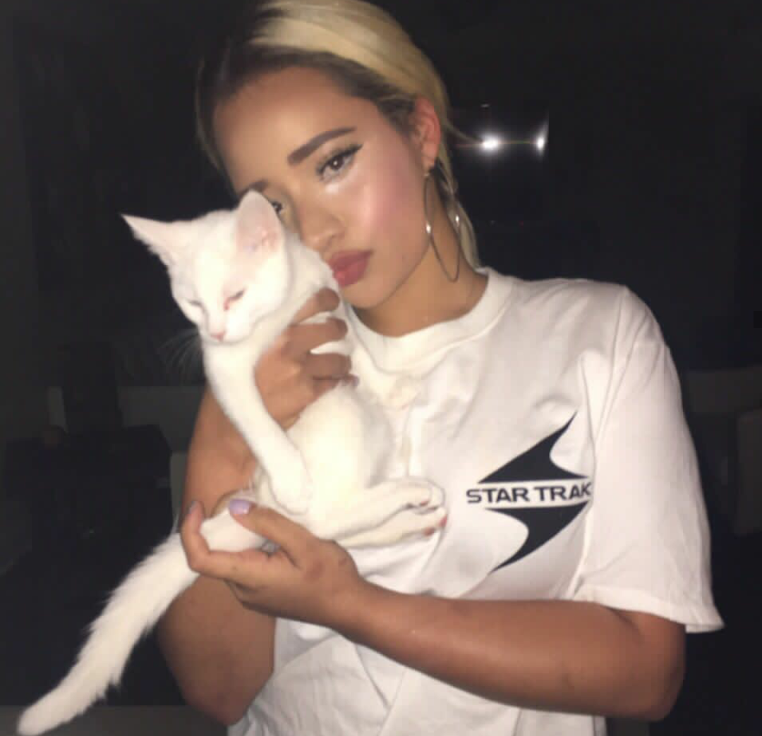 aesthetic, blonde, cat, night, soft