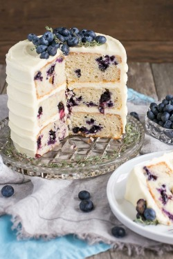 berry cake, blueberry, buttercream, cake, cream cake